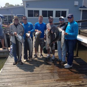 Chesapeake Bay Striper Fishing
